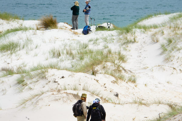 Photographers in the dunes, Lime Bay reserve