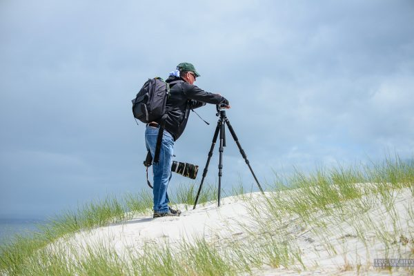 Photographer in the dunes, Lime Bay reserve